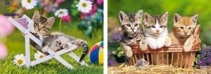 "Castorland: Пазлы 2х1 ""Котята"""