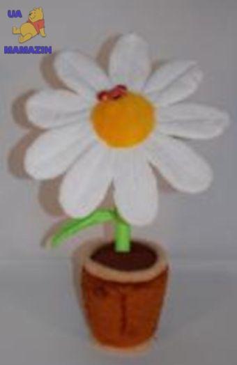 Цветок ромашка в горшке