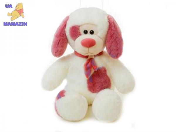 Собака Филя средний