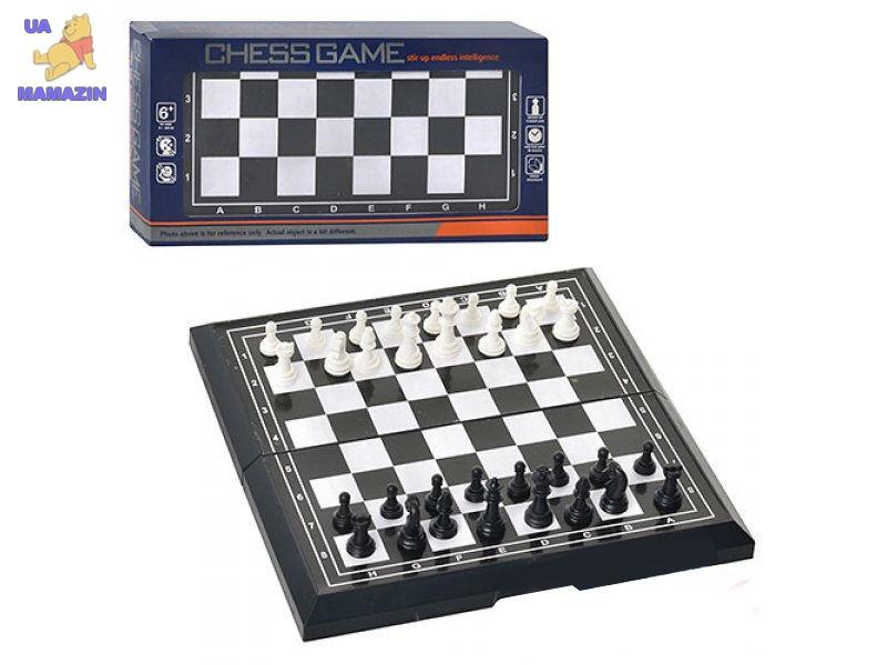 Шахматы ( пластик)