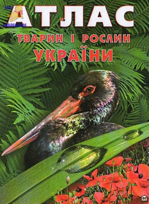 Енциклопедії: Атлас тварин і рослин України укр.