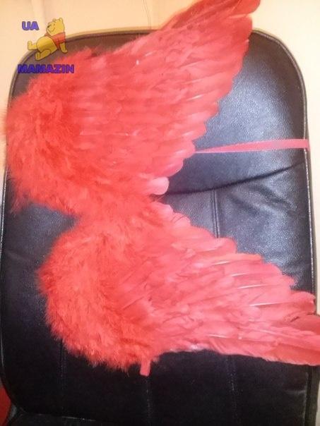 Крылья ангелочка с перьев - красные или черные