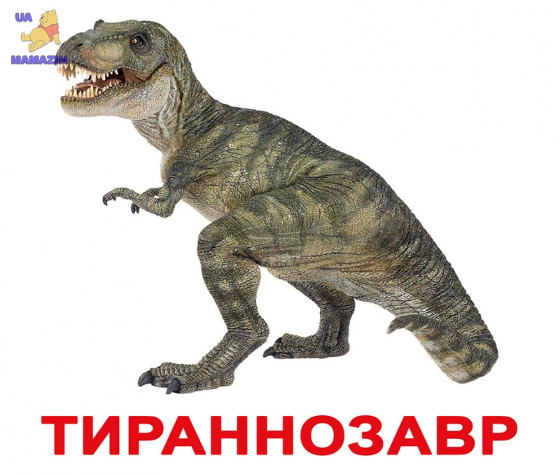 """Карточки большие русские с фактами """"Динозавры"""""""