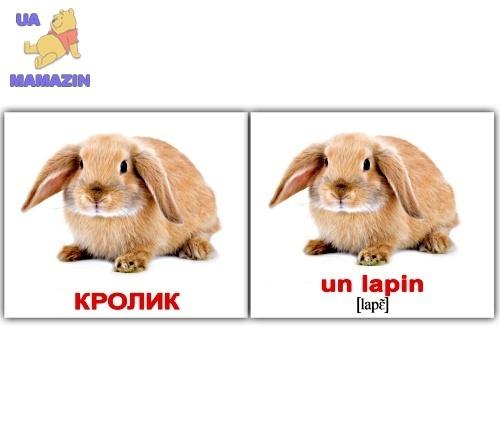 """Карточки мини русско-французские """"Домашние животые/Les animaux domest"""