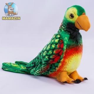 Папугай, 40 см