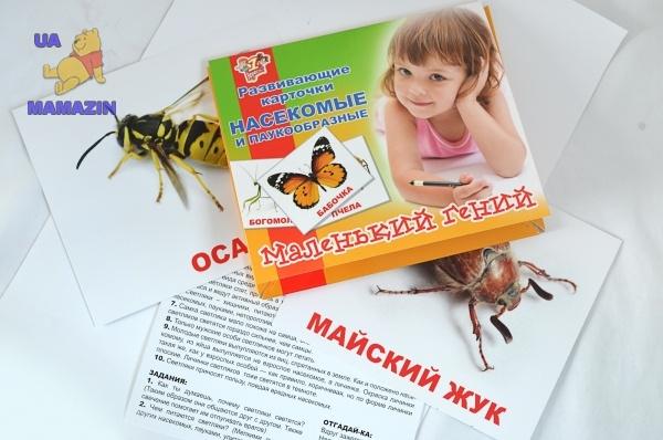 """Набор детских карточек """"Насекомые"""", 15 шт в наборе"""