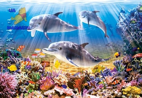 Castorland: Пазл Дельфины