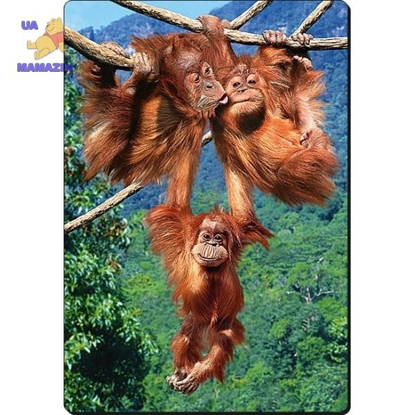 Castorland: пазл Игры обезьян 500 элементов