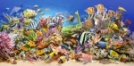 Пазлы Castorland Underwater Life 4000 элементов