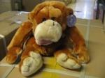 Обезьяна орангутанг