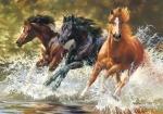 Castorland: Пазлы 500 элементов Три лошади