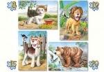 """Castorland: пазл 4 в 1 """"Животные"""""""