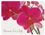 """Папка с  30 файлами  A4 """"Because I am а lady"""" (Орхидея)"""