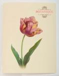 """Папка с 30 файлами A4 """"Botanique"""""""