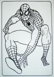 Бархатная раскраска Человек Паук