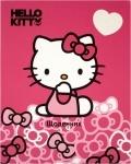 Дневник школьный Hello Kitty-3