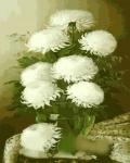Картина-раскраска Menglei Белые цветы в стеклянной вазе