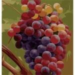 Картина раскраска по номерам - Гроздь винограда