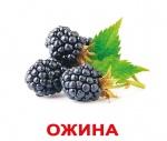 """Карточки большие украинские с фактами """"Ягоди"""""""