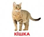 """Карточки большие украинские с фактами """"Свійськи тварини"""""""