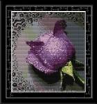 Набор вышивки Сиреневая роза