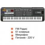 Синтезатор с FM радио и микрофоном