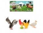 Домашние животные(птицы)