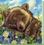 Милі звірята: Ведмедик