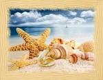 Вышивка бисером Сокровища моря (Пляж)