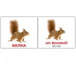 """Карточки мини русско-французские """"Дикие животные/Les animaux sauvage"""""""