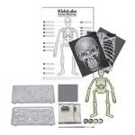 Детская лаборатория. Скелет человека