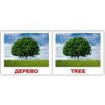 "Карточки мини украинско-английские ""Природа/Nature"""