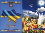 """Книга канцелярськая  ТМ """"Тетрада"""""""