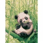 "Картина по номмерам ""Забавная панда"" (без коробки)"