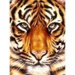 "Картина по номерам ""Сила тигра"" (без коробки)"