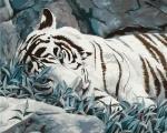 "Картина по номерам ""Белый тигр"" (без коробки)"