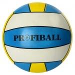 Мяч детский волейбольный