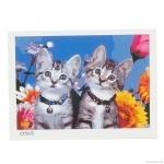 "Картина ""Два котенка"" по номерам 30*40см"