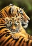 """Касторленд пазлы 500 """"Тигры"""""""