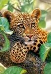 "Пазлы 1500 ""Ягуар на дереве"""