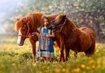 """Пазлы 500 """"Лошади"""""""