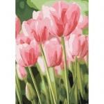 Творчество: Картина по номерам - Весенние тюльпаны