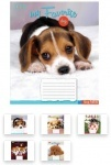 Тетрадь в клеточку А5/18 Favorite Dog