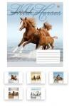 Тетрадь в клеточку А5/36 Wild Horses