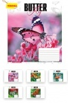 Тетрадь в линию А5/48 Butterflys