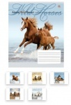 Тетрадь в линию А5/48 Wild Horses
