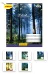Тетрадь в линию А5/60 Magic Forest