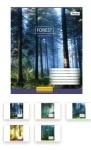 Тетрадь в клеточку А5/60 Magic Forest