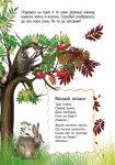 Енциклопедія дошкільника. Природа (у)