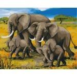 Картины по номерам - Африканский полдень (без коробки)